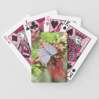 Naipes azules marinos de la mariposa baraja cartas de poker