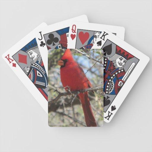 Naipes cardinales barajas de cartas