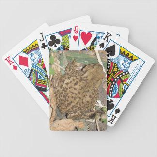 Naipes comunes del sapo del europeo baraja cartas de poker