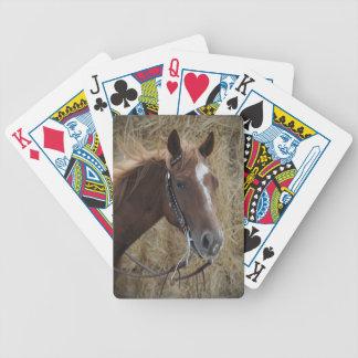 Naipes cuartos del caballo baraja de cartas