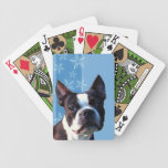 Naipes de Boston Terrier Baraja De Cartas
