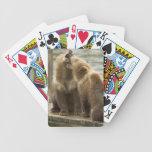 Naipes de Cubs de oso de Alaska Brown Baraja