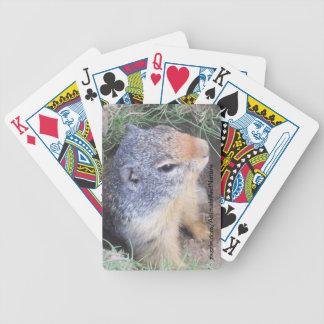 Naipes de Groundhog
