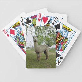 Naipes de la alpaca baraja cartas de poker