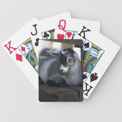 Naipes de la cabra cartas de juego