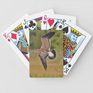 Naipes de la gaviota baraja de cartas