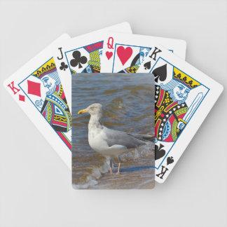 Naipes de la gaviota baraja cartas de poker