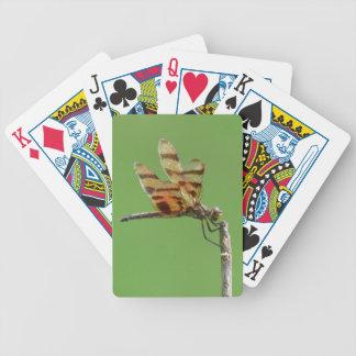Naipes de la libélula que se encaraman baraja cartas de poker