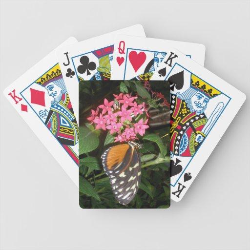 Naipes de la mariposa barajas de cartas