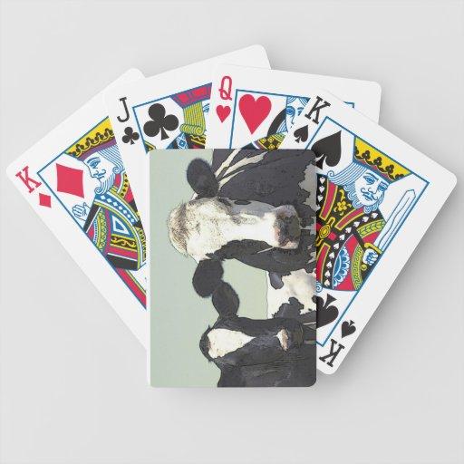 Naipes de la plantilla de la tarjeta de la bicicle baraja de cartas