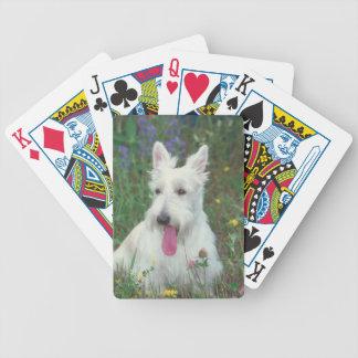 Naipes de trigo del perro de Terrier del escocés Baraja De Cartas