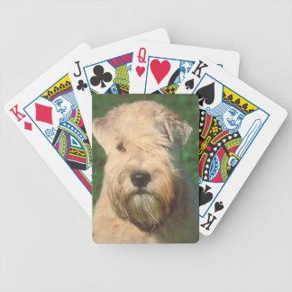 Naipes de trigo suavemente revestidos del perro de baraja de cartas