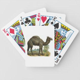 Naipes de un camello de la chepa baraja cartas de poker