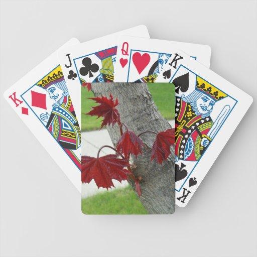 Naipes del árbol de arce barajas de cartas