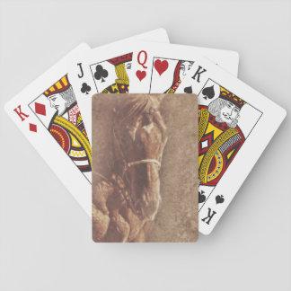Naipes del caballo, caras estándar del índice barajas de cartas