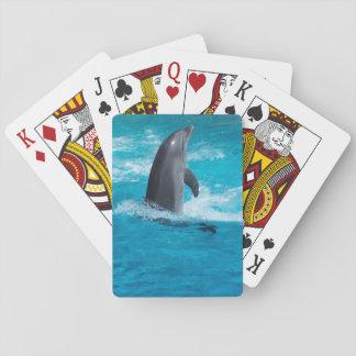 Naipes del delfín barajas de cartas