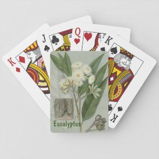 Naipes del eucalipto