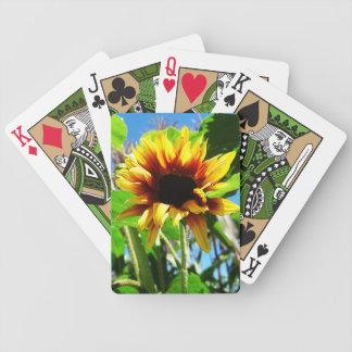 Naipes del girasol de la melena del león barajas de cartas