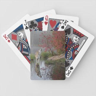 Naipes del lobo gris baraja de cartas