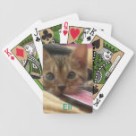 Naipes del mascota del personalizar baraja cartas de poker