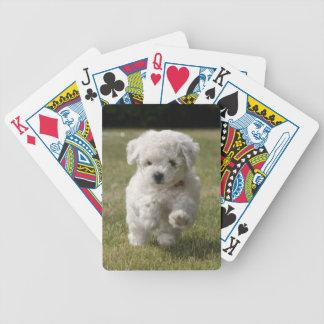 Naipes del perro de perrito de Bichon Frise Baraja De Cartas