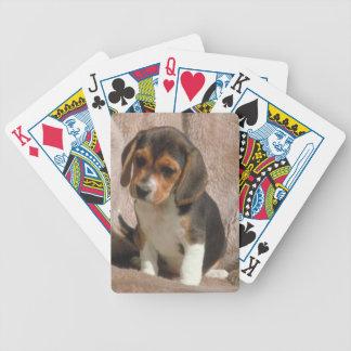 Naipes del perro de perrito del beagle