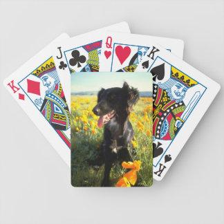 Naipes del perro del perro perdiguero de la capa p baraja de cartas