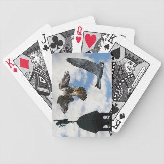 Naipes del póker de los Falcons de peregrino en vu Barajas De Cartas