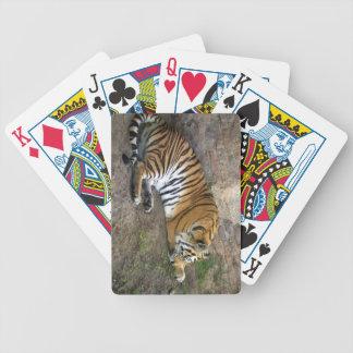 Naipes del tigre barajas