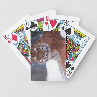 naipes del tigre baraja de cartas