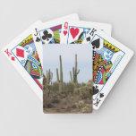 Naipes--Diversos cactus Barajas