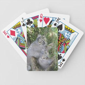 Naipes - gato de los pallas baraja cartas de poker