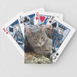 Naipes grises del gato de las abrazos baraja