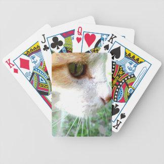 Naipes lindos del gato baraja cartas de poker