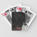 Naipes negros del laboratorio cartas de juego