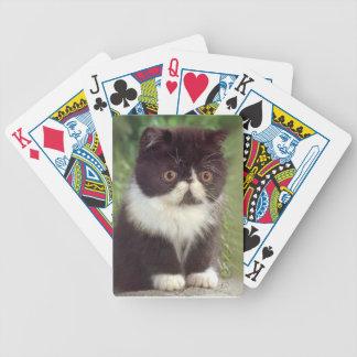 Naipes persas negros y blancos del gato del gatito barajas