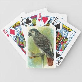Naipes rojos del loro de la cola baraja de cartas
