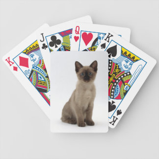 Naipes siameses del gato del gatito baraja