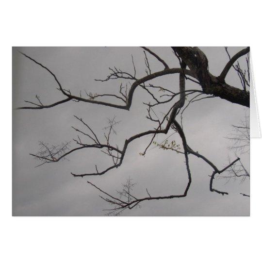 Naked Tree - Stormy Sky Card
