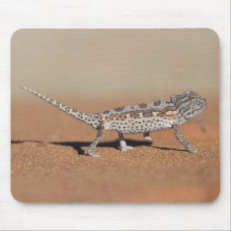 Namaqua Chameleon, Namib Desert, Namib-Naukluft Mouse Pad