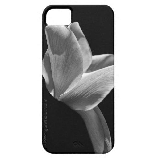 """""""Namaste"""" en caja negra y blanca del iPhone 5 iPhone 5 Carcasas"""
