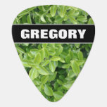 [ Thumbnail: Name + Green Hedge Shrub Type Plant Photograph Guitar Pick ]