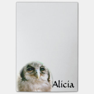 Name or Monogram Owl Post-It Notes Post-it® Notes