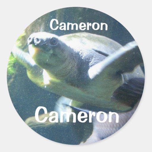 name sticker for : Cameron