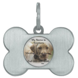 Name Tag for Your Dog Pet Name Tag