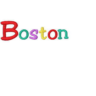 Namedrop Nation_Boston Multi-colored Embroidered Hooded Sweatshirt