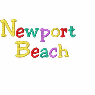 Namedrop Nation_Newport Beach Multicolored Embroidered Hoody