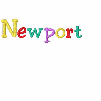 Namedrop Nation_Newport Multi-colored Embroidered Hoodie