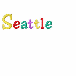 Namedrop Nation_Seattle Multi-colored Embroidered Hoody