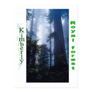 Names&Meanings - Kimberly Postcard